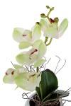 Композиция декоративная Орхидея