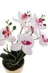Композиция декоративная Нежная орхидея