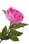 Цветок декоративный Пион