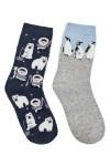 Набор носков детских Северный полюс