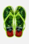 Шлепанцы резиновые Любитель арбузов