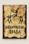 Обложка для автодокументов Вождительские права