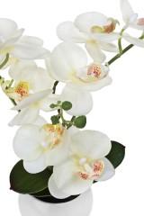 Композиция декоративная Изумительная орхидея