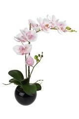 Композиция декоративная Свежесть орхидей