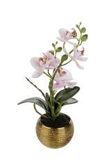 Композиция декоративная Тигровая орхидея