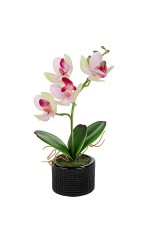 Композиция декоративная Прекрасная орхидея