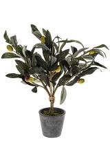 Композиция декоративная Оливковое дерево
