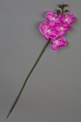 Цветок декоративный Орхидея