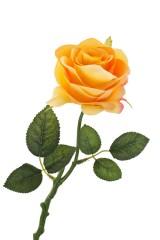Цветок декоративный Цветущая роза