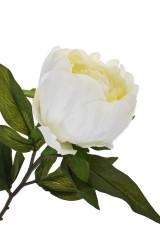Цветок декоративный Пышный пион