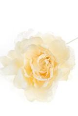 Цветок декор. Изысканный пион