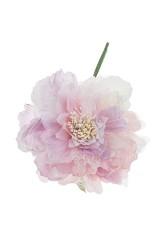 Цветок декоративный Волшебная роза
