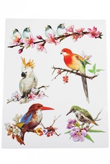 Набор аппликаций Изящные птички
