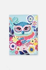 Обложка для паспорта Волшебная сова