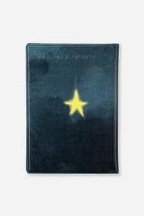 Обложка для паспорта Ангелокот