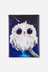 Обложка для паспорта Сова и космос