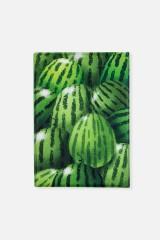 Обложка для паспорта Любитель арбузов