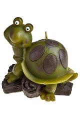Свеча Удивленная черепаха