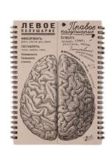 Блокнот Мозги равные полушария