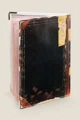 Обложка для паспорта Идиот (кожа)