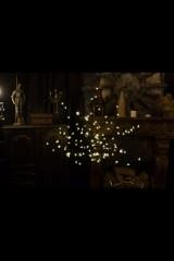 Дерево комнатное  белого цвета Сакура