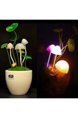 Светильник-ночник Грибы аватара