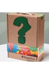 Подарочный Megabox Творческой личности