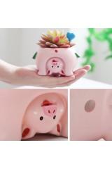 Кашпо Попа свинки
