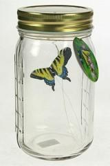 Интерьерное изделие Бабочка