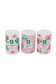 Набор свечей ароматизированных «Кактусы»