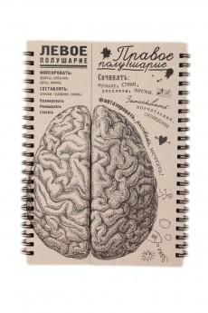 Блокнот «Мозги правое полушарие»