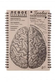 Блокнот «Мозги равные полушария»