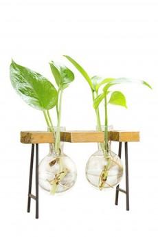 Гидропоника с навесными колбами «Green life»