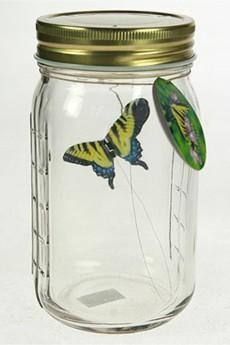Интерьерное изделие «Бабочка»