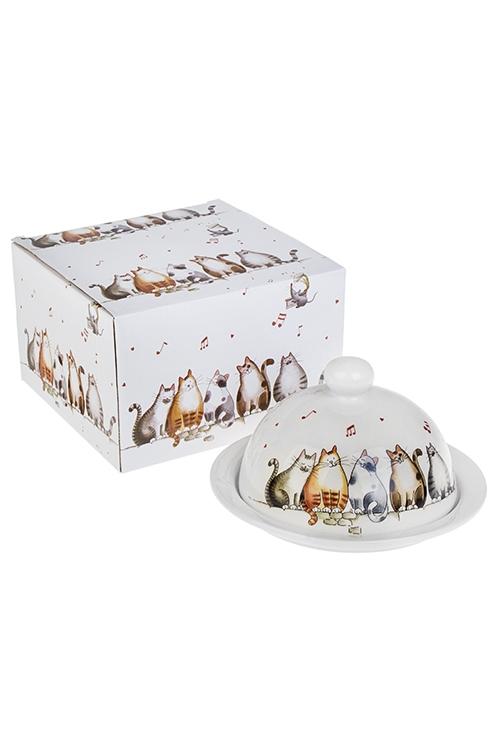 Масленка Милые котикиКухонные аксессуары<br>17*9см, керам.<br>