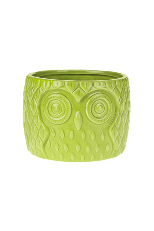 Кашпо для цветов Мудрая соваКерамические вазы и кашпо<br>13.5*13.5*10см, доломит. керам., зеленое<br>