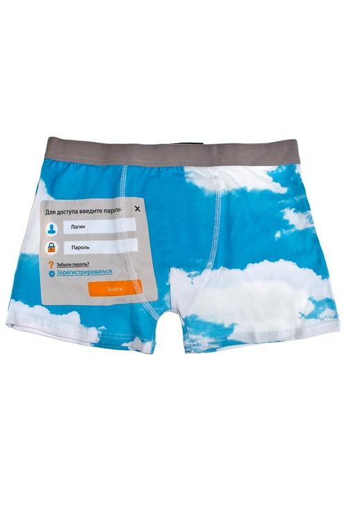 Трусы мужские Логин и парольМужская одежда в подарок на 23 февраля<br>Размер L, 95% хлопок, 5% эластан<br>