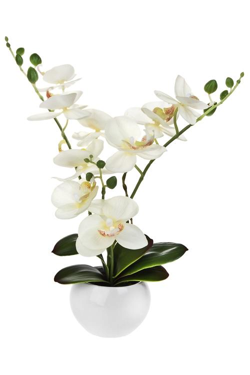 Композиция декоративная Изумительная орхидеяДекоративные цветы<br>Выс=30см, ЭВА, пластм., металл, керам., белая, в горшке<br>