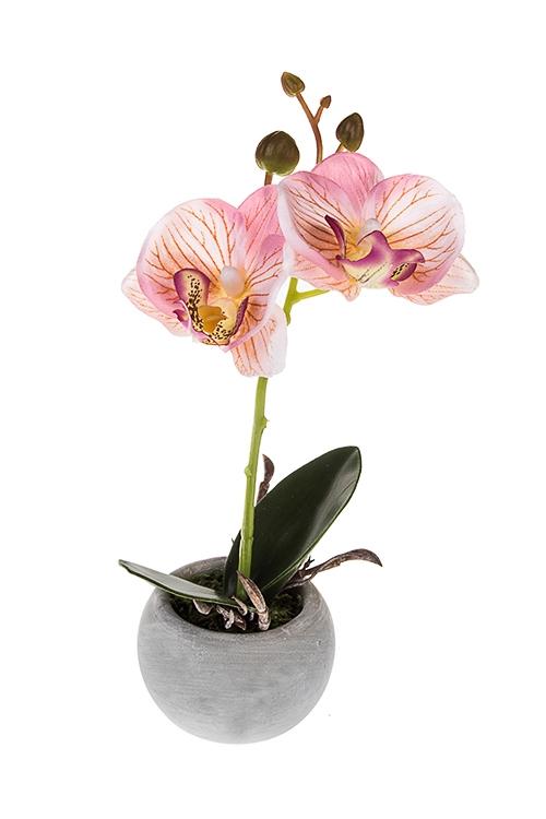 Композиция декоративная Трепетная орхидеяДекоративные цветы<br>Выс=19см, керам., текстиль, пластм., пенопласт, роз.-зеленая<br>