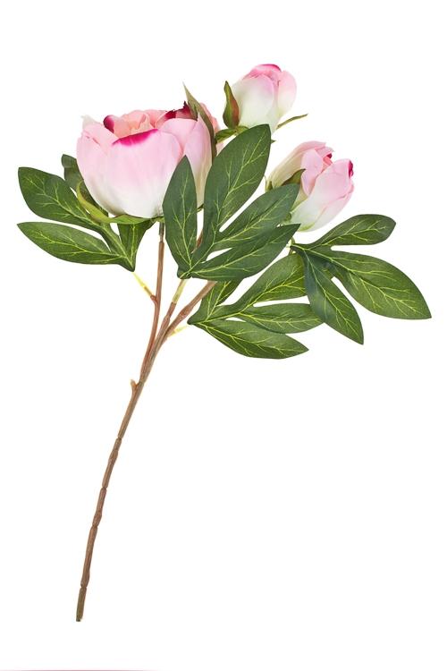 Ветка декоративная Прекрасные пионыДекоративные цветы<br>Выс=40см, полиэстер, пласт., металл, пенопласт, розово-белая<br>
