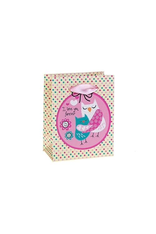 Пакет подарочный Влюбленные совушкиСувениры и упаковка<br>11*6.5*14см, бум., матовый, с декором<br>