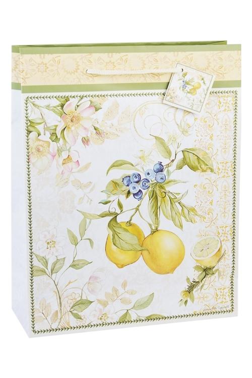 Пакет подарочный Солнечный лимонПакеты на любой повод<br>27*10*34см, бум.<br>