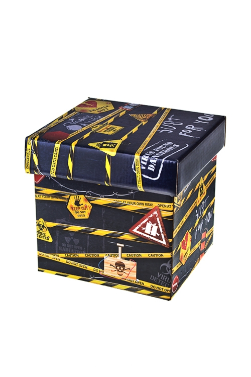 Коробка подарочная Особо опасноСувениры и упаковка<br>21.5*21.5*21.5см, бум.<br>
