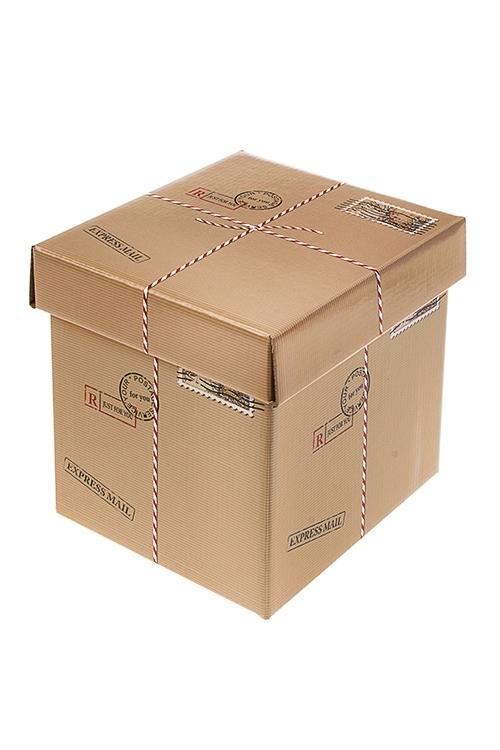 Коробка подарочная Посылка с сюрпризомСувениры и упаковка<br>21.5*21.5*21.5см, бум.<br>