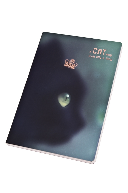 Записная книжка Черная кошкаУчеба и работа<br>14*21см, бум., в линейку<br>