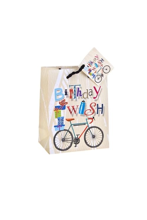 Пакет подарочный Заветное желаниеПакеты «С Днем рождения»<br>11.4*6.4*14.6см, бум., матовый, с декором<br>