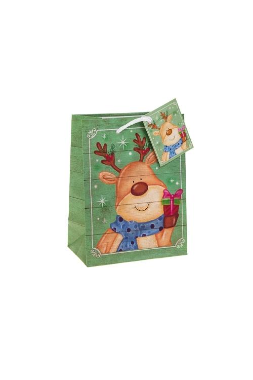 Пакет подарочный новогодний Олень с подаркомСувениры и упаковка<br>11.4*6.4*14.6см, бум., матовый<br>