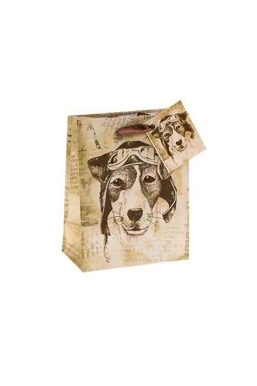 Пакет подарочный Пес СчастливчикСувениры и упаковка<br>11.4*6.4*14.6см, бум., с декором<br>