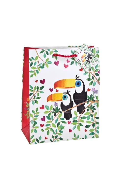 Пакет подарочный Влюбленные туканыСувениры и упаковка<br>18*10*22.7см, бум., матовый, с декором<br>