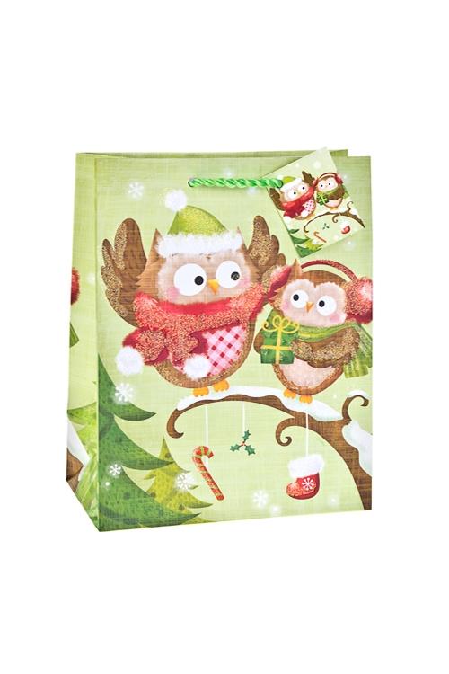 Пакет подарочный новогодний СовятаПакеты «С Новым годом и Рождеством»<br>18*10*22.7см, бум., матовый, с декором<br>